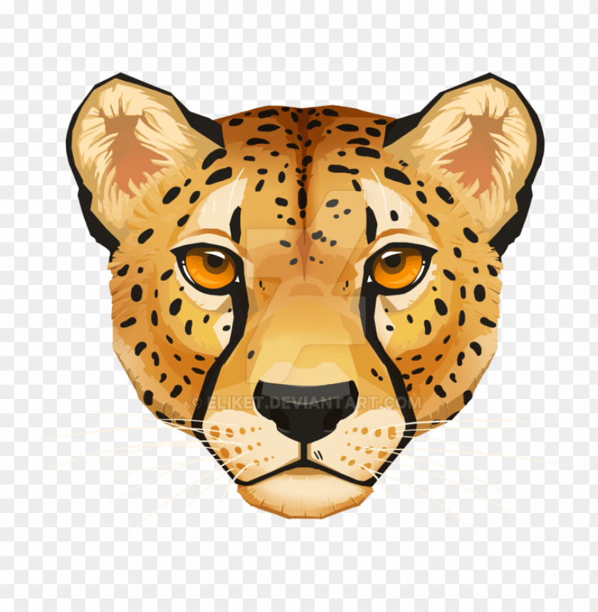 download cheetah face png free png images toppng toppng