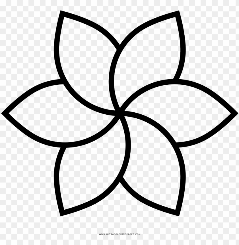 Download Dibujo De Flor Para Colorear Spring Flower Icon