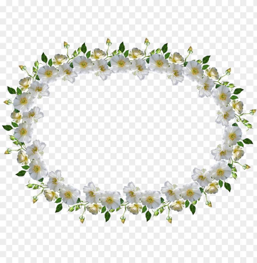 Download Frame Border White Rose Floral Bingkai Bunga Mawar Putih Png Free Png Images Toppng