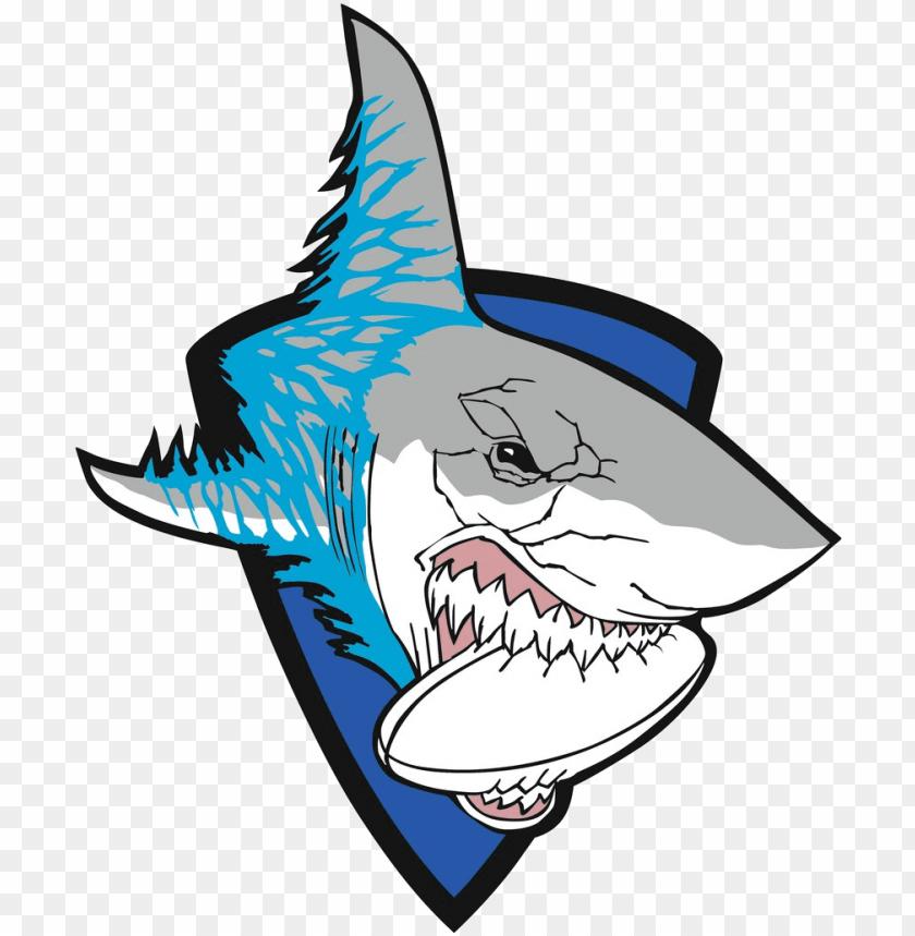Download White Sharks Ivanovo Gambar Hiu Kartun Kere Png Free Png Images Toppng