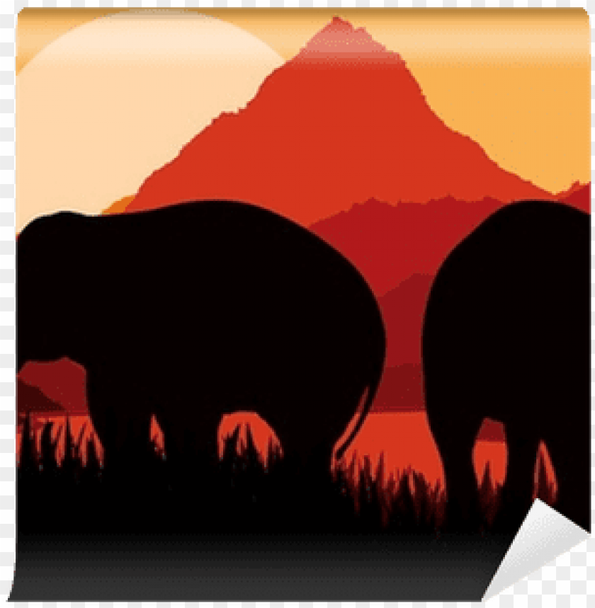 free PNG african elephant PNG image with transparent background PNG images transparent