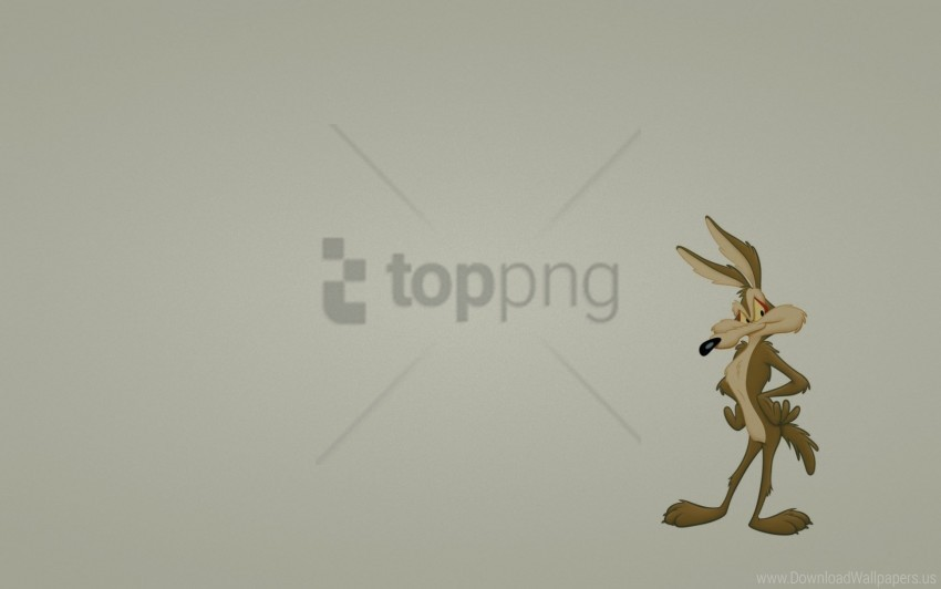 free PNG animal, coyote, eyes, minimalism wallpaper background best stock photos PNG images transparent
