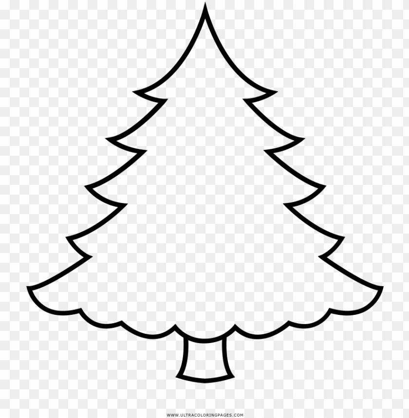 Arvore De Natal Desenho Para Colorir Pine Christmas Tree Colori