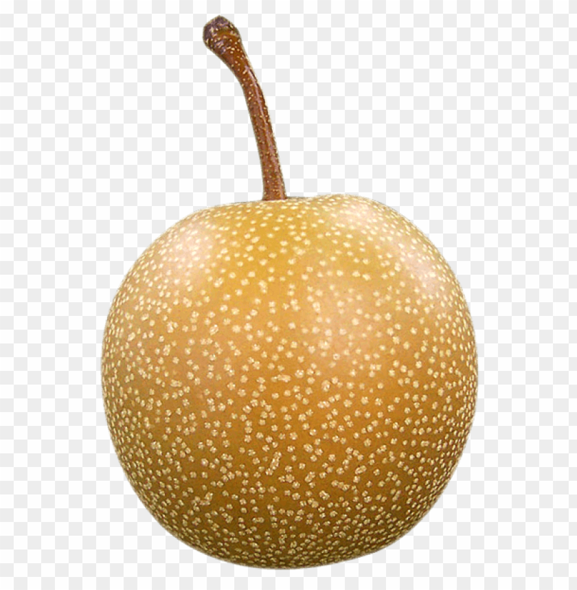 free PNG Asian Pear png - Free PNG Images PNG images transparent