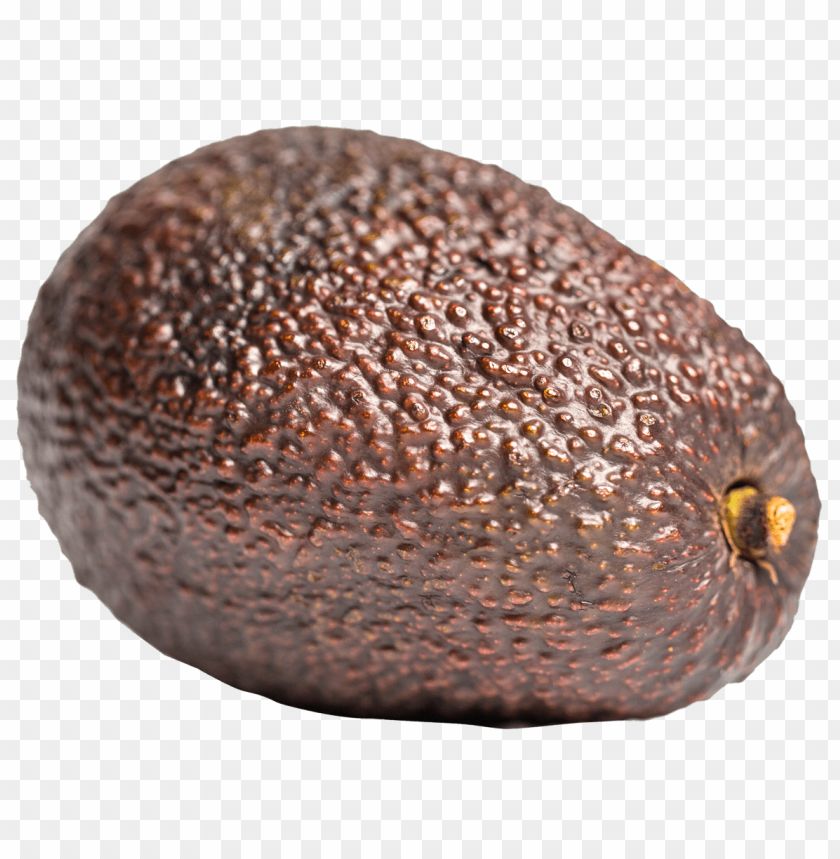 free png Avocado PNG images transparent
