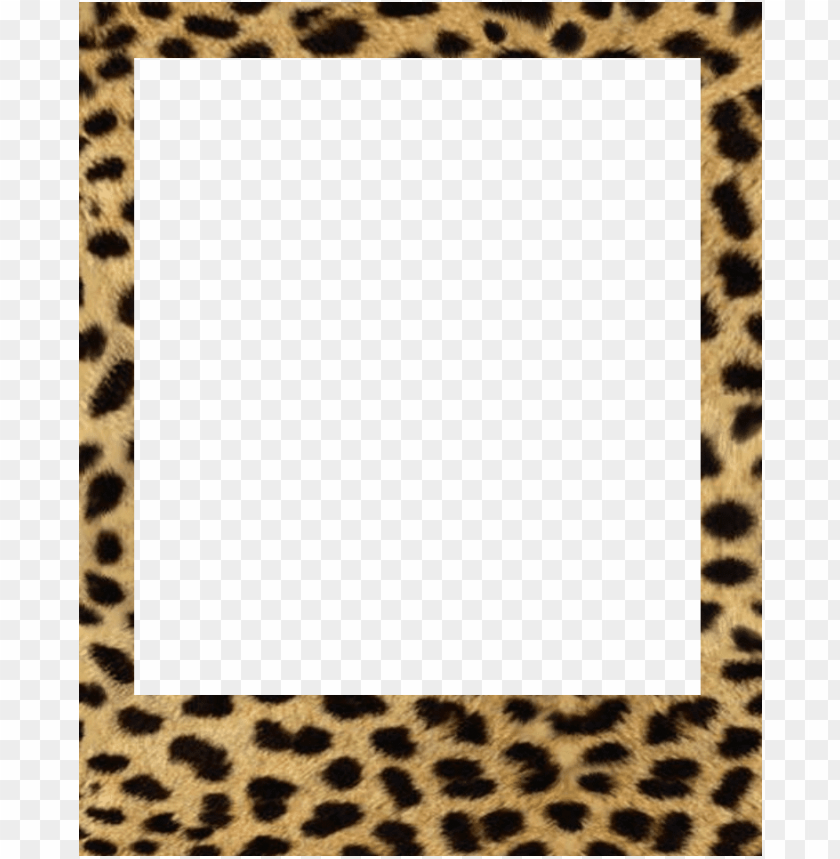 free PNG baby polaroid frames PNG image with transparent background PNG images transparent