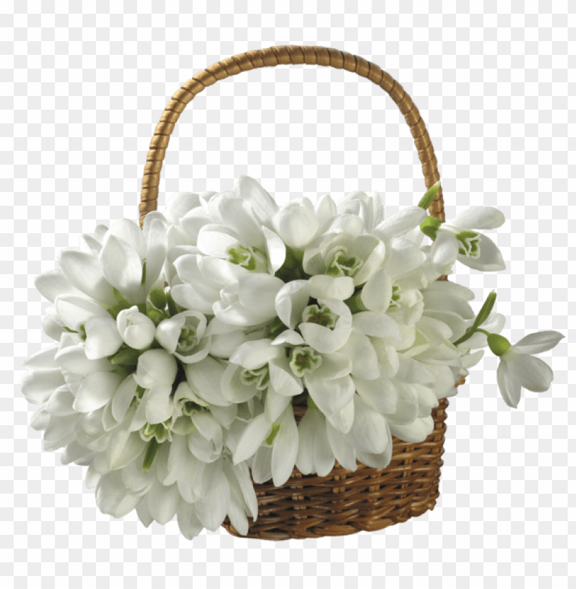 free PNG Download basket with spring snowdrops png images background PNG images transparent