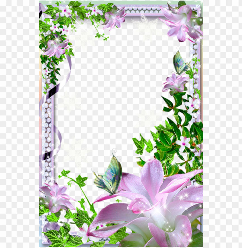 free PNG beautiful transparent photo frame with flowers background best stock photos PNG images transparent