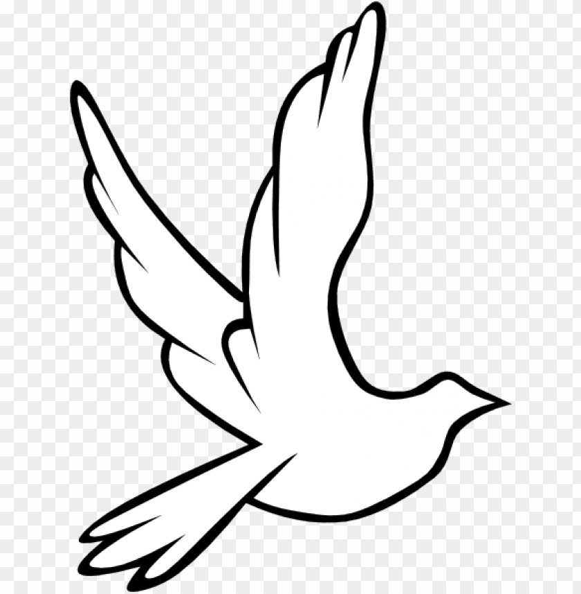 black and white flying birds PNG image with transparent background