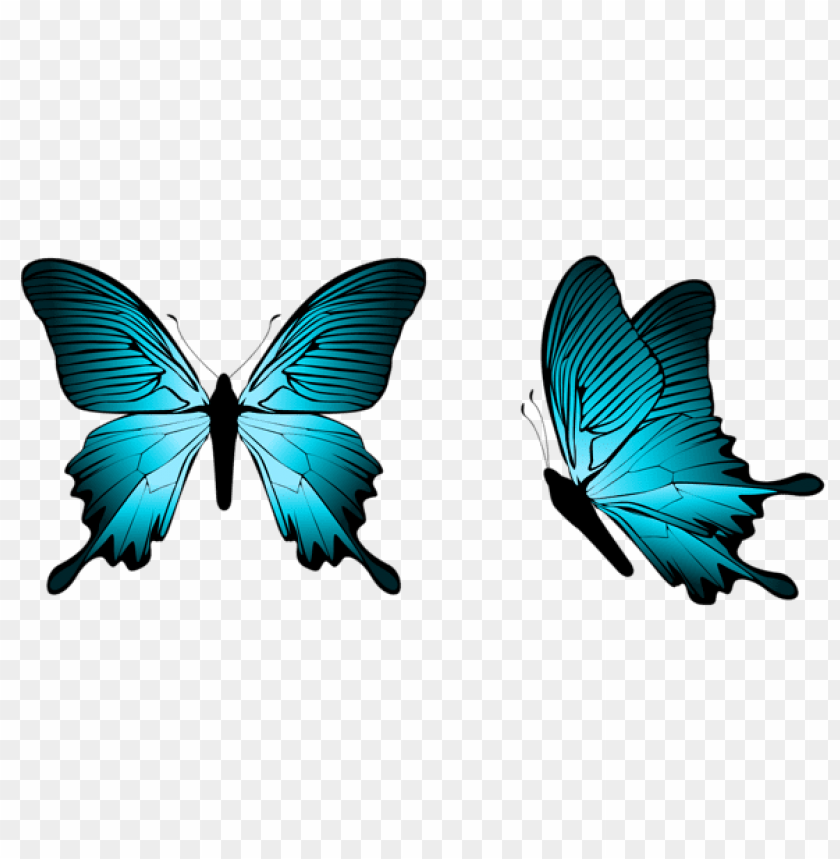 Blue Butterfly Png Free Png Images Toppng