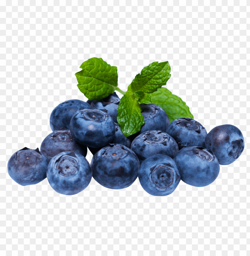 Download blueberries png images background | TOPpng