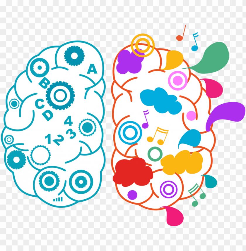 brains clipart reading - right brain left brain PNG image