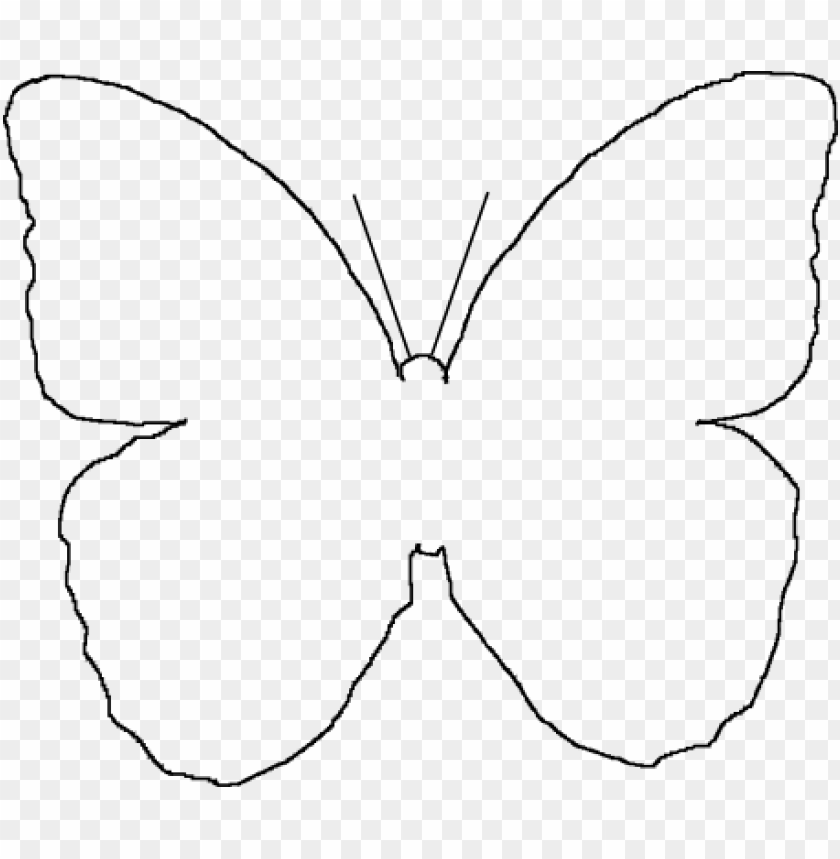 image relating to Printable Wings referred to as erfly wings template - printable erfly wing template