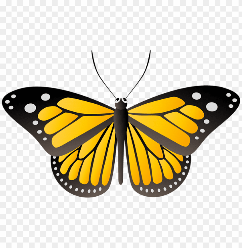 Download Butterfly Yellow Png Free Png Images Toppng