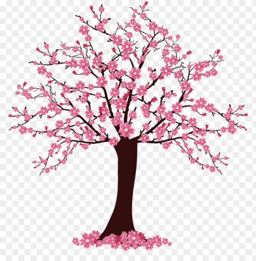 Cherry Blossom Tree Clip Art Arvore De Cerejeira Desenho Png