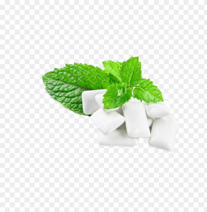 free png chewing gum  s PNG images transparent