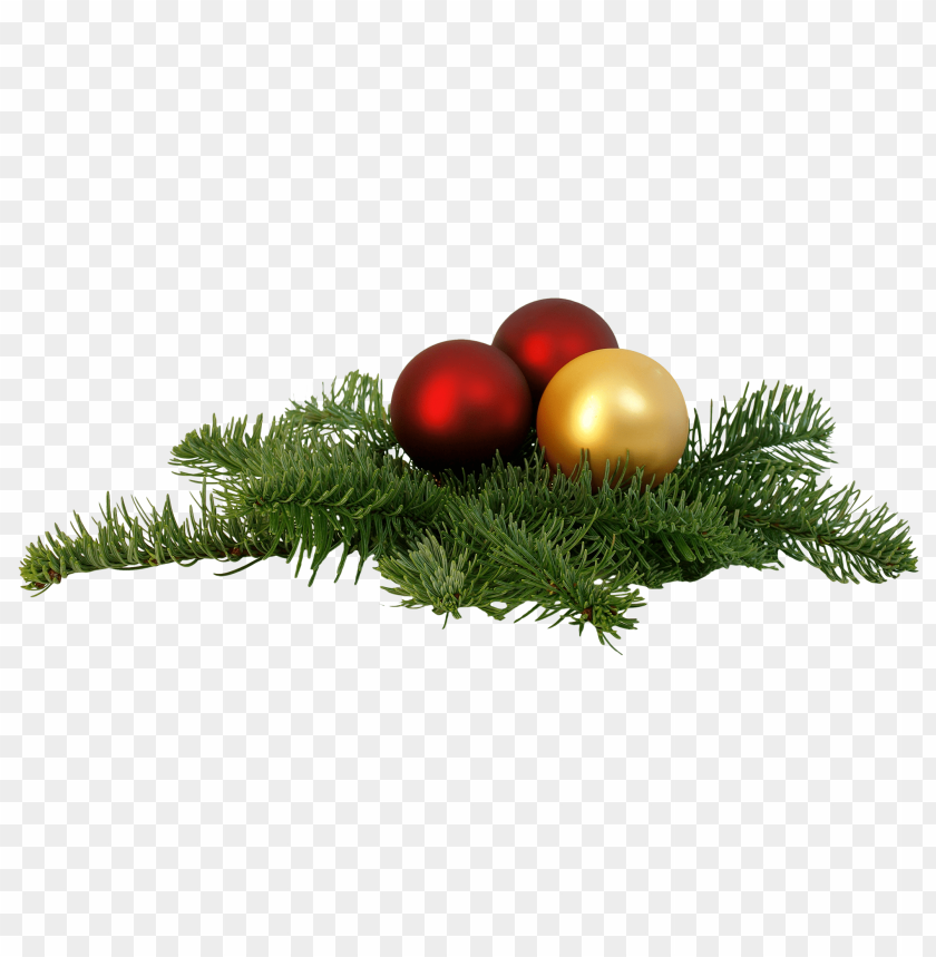free PNG Download Christmas Branch png images background PNG images transparent