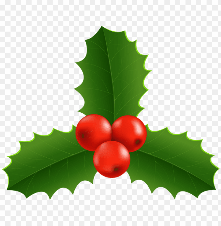 Christmas Holly Png.Christmas Holly Png Free Png Images Toppng