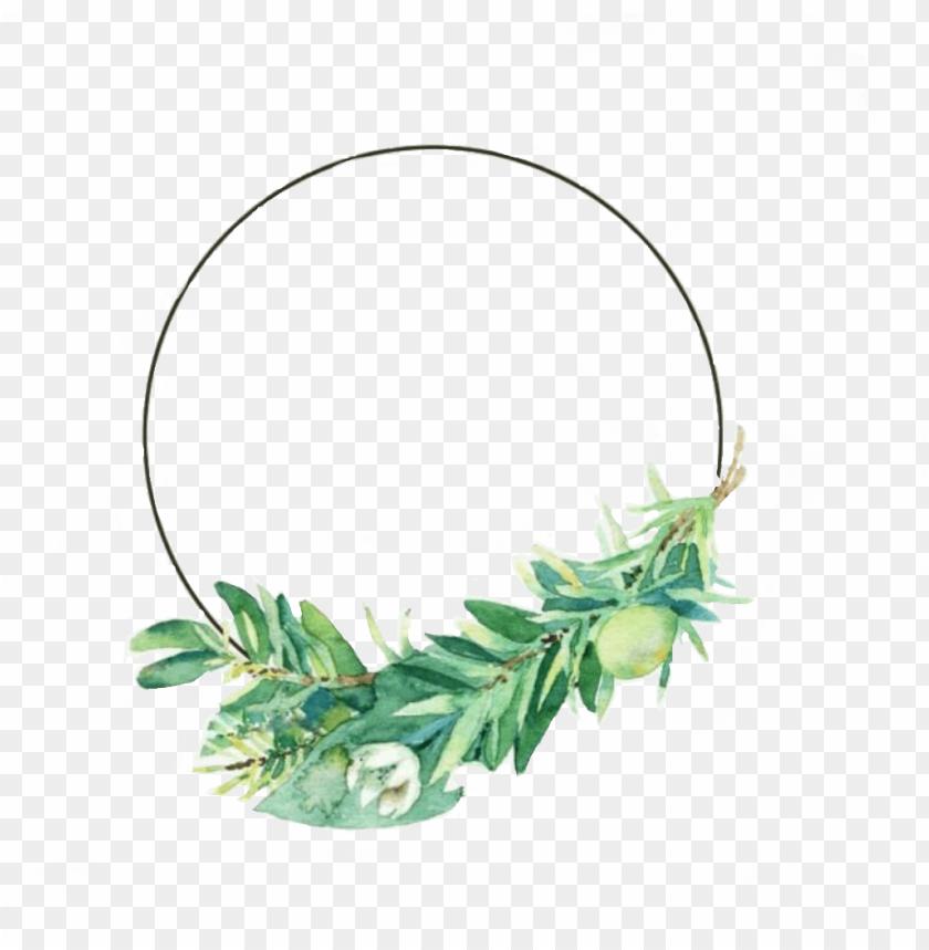 círculo moldura floral tropical - overlays png for edits PNG