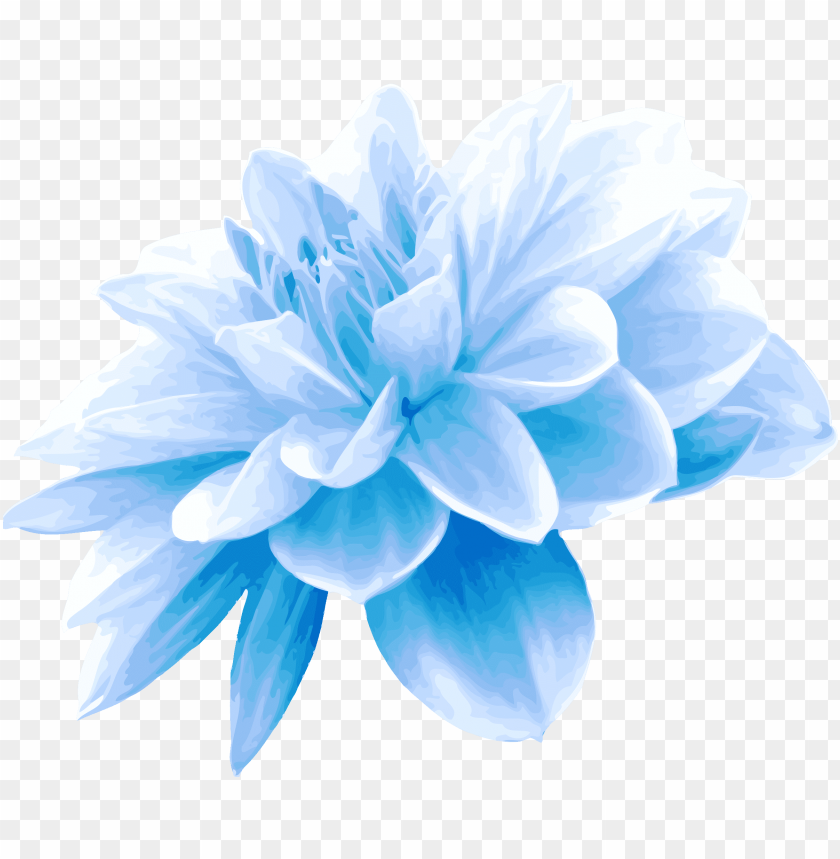 free PNG collection of free flower transpa blue on ubisafe - light blue flower PNG image with transparent background PNG images transparent