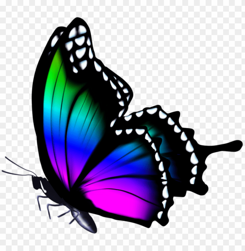 Download Colorful Butterfly Clipart Png Photo Toppng