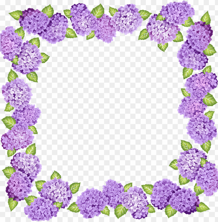Best Stock Photos Cute Transparent Purple Flowers Frame Background