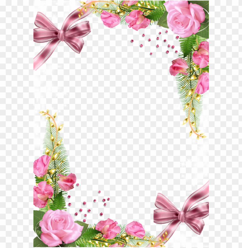 free PNG best stock photos cuteframe with pink roses background PNG images transparent