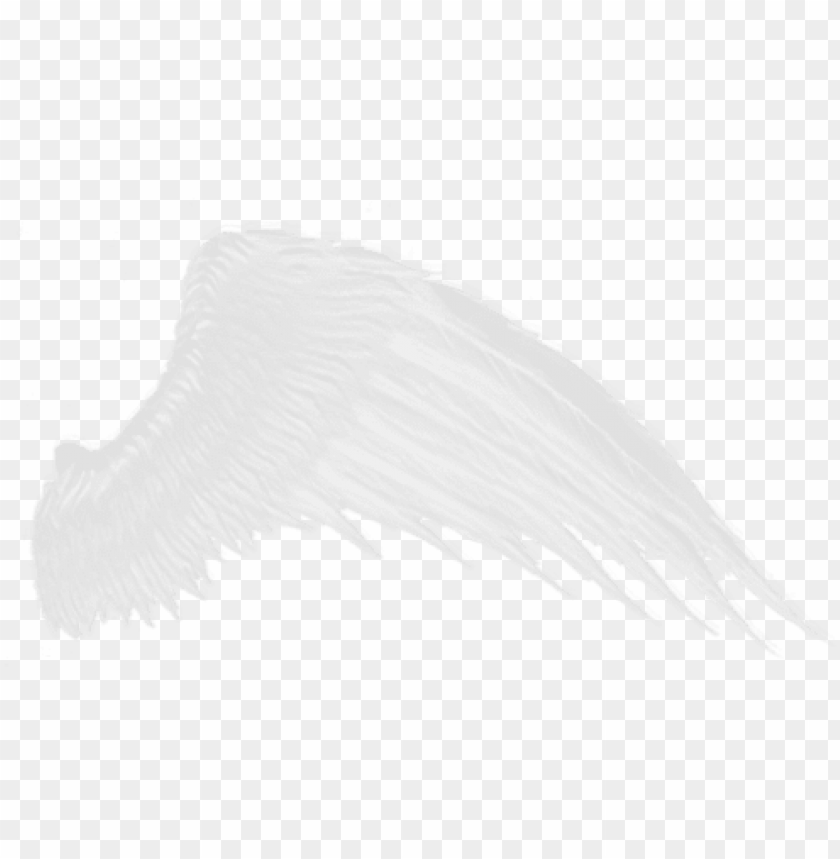 free PNG download - white wings transparent background PNG image with transparent background PNG images transparent