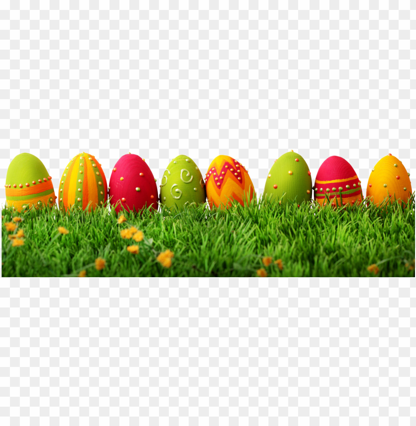 easter grass png - eggs easter PNG image with transparent background@toppng.com
