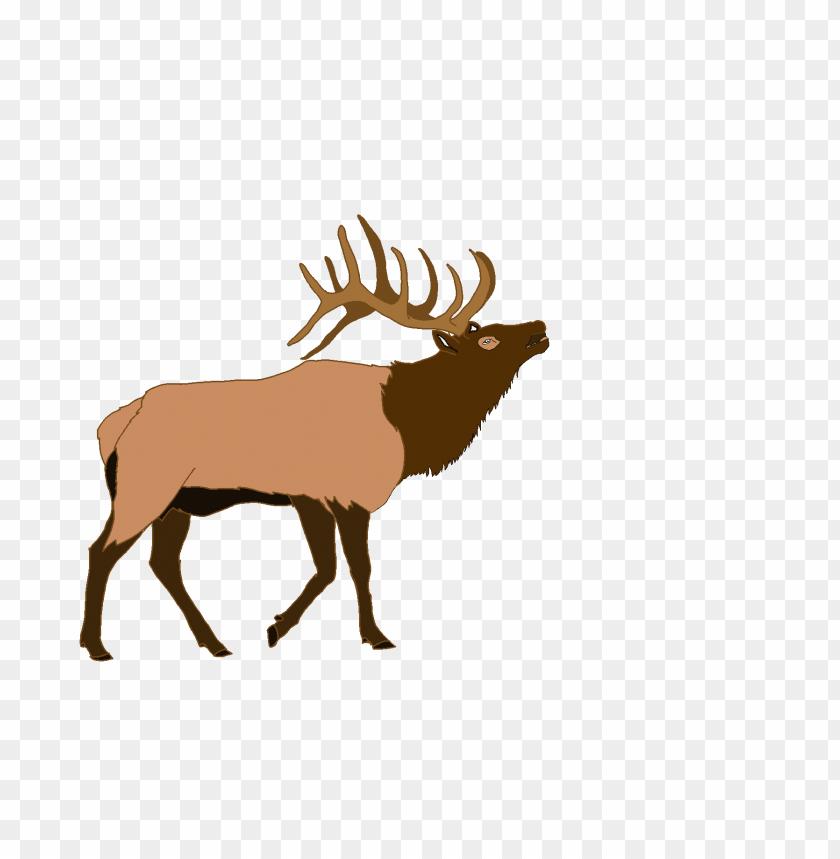 free png elk PNG images transparent