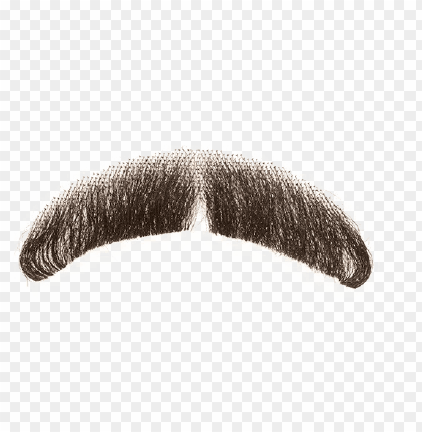 free PNG fake moustache transparent background - real mustache beard PNG image with transparent background PNG images transparent