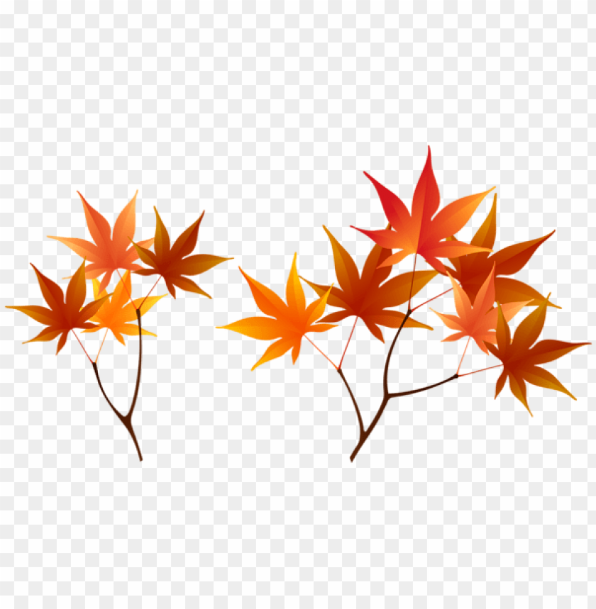 free PNG Download fall branches clipart png photo   PNG images transparent