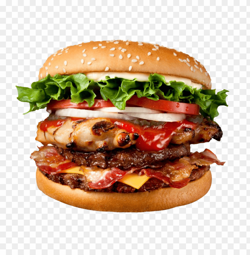 Best Quality Fast Food Burger Meat