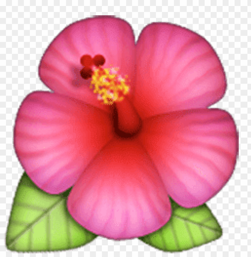Flower Emoji Transparent Png Image With Transparent Background Toppng