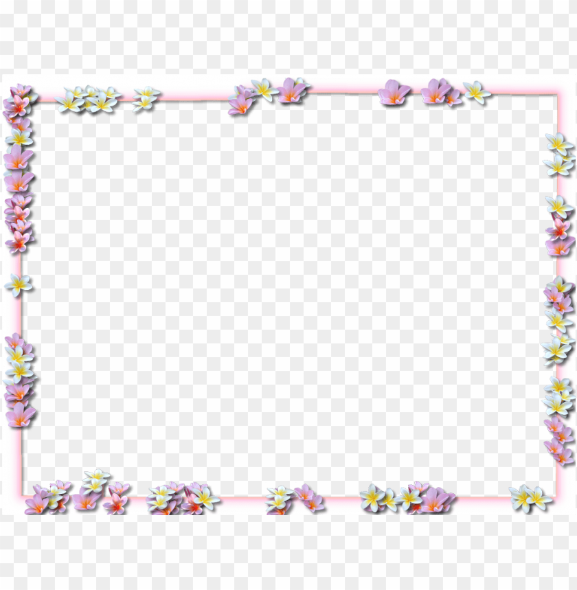 free PNG flowers borders png pic png - Free PNG Images PNG images transparent