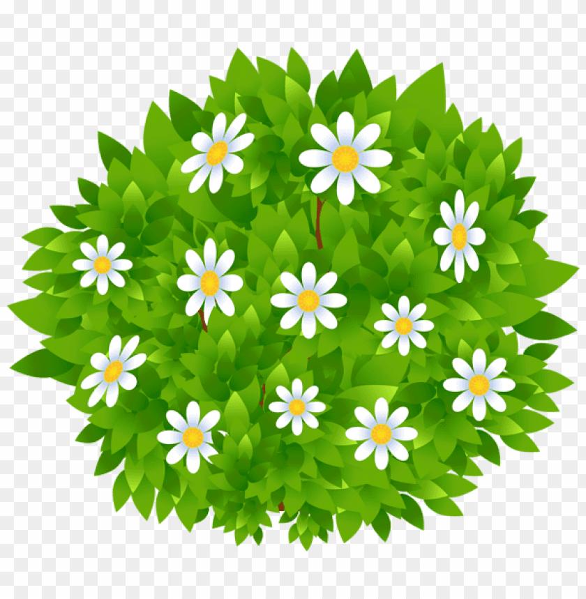 Download Flowers Bush Transparent Png Images Background Toppng
