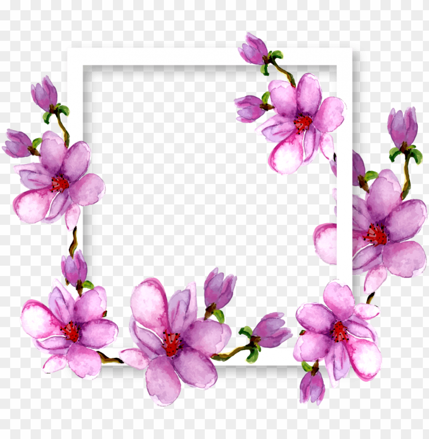 free PNG flowers magnolia border frame watercolor purple ftestic - transparent watercolor  flower purple png - Free PNG Images PNG images transparent