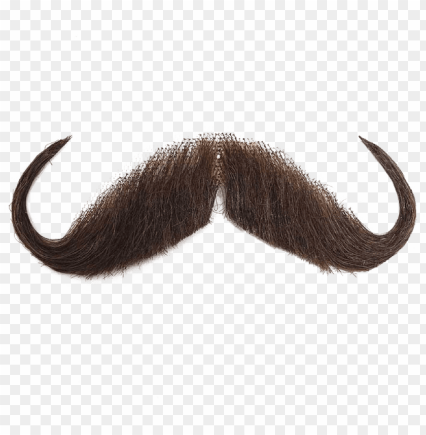 free PNG for this time you need to make photo bomb with this - transparent background moustache PNG image with transparent background PNG images transparent