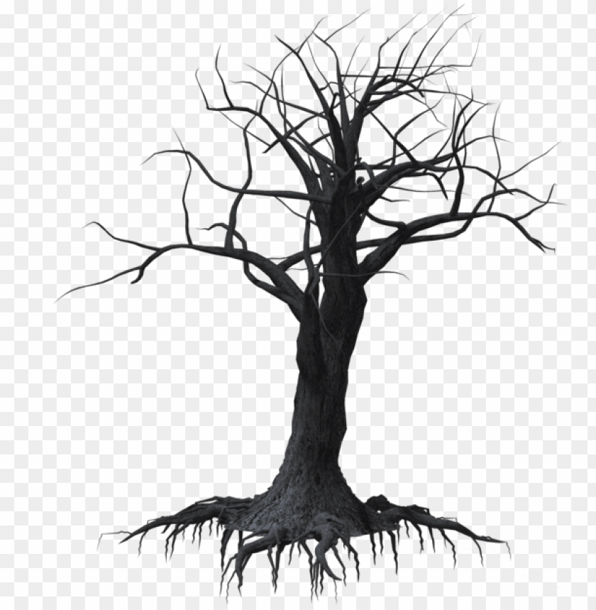 Forrest Drawing Dead Tree Forest Creepy Tree Png Image