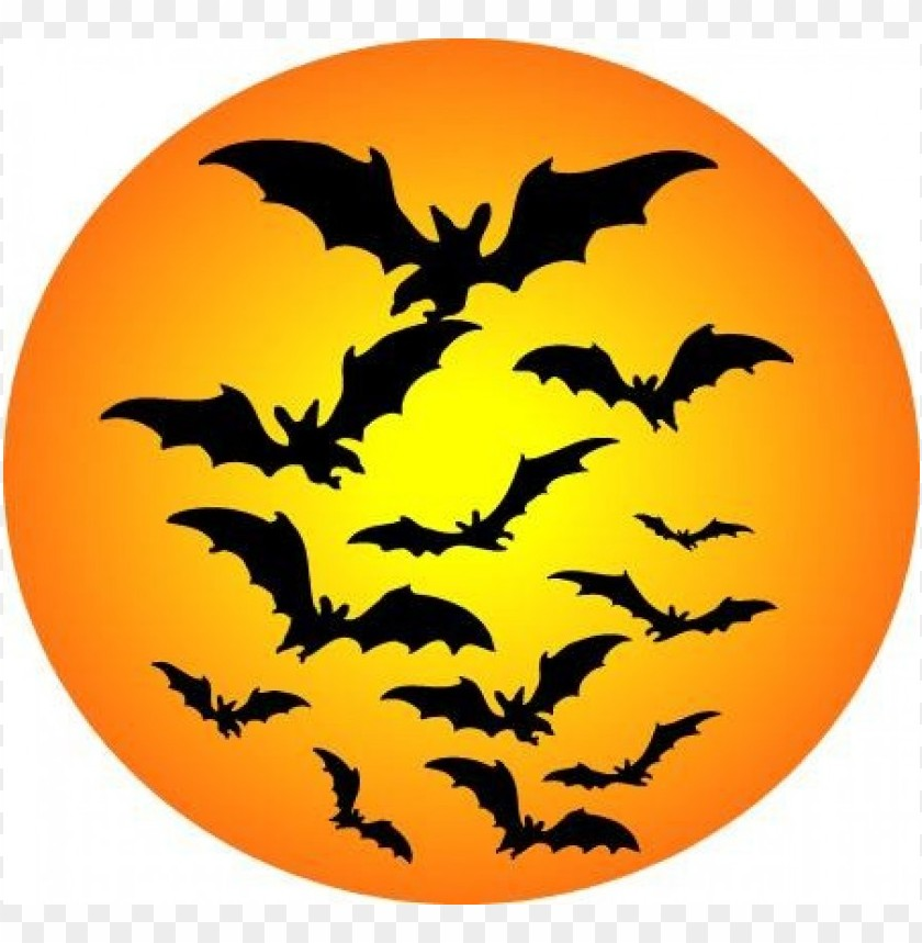 free png free halloween  free  images 3 PNG images transparent