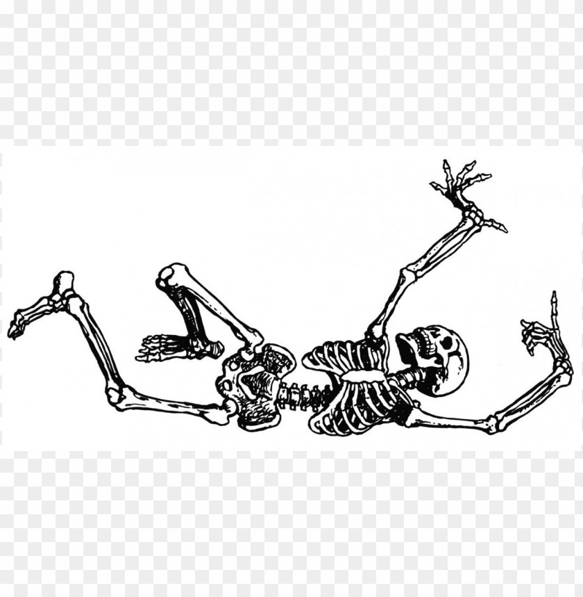 free PNG Download free halloween skeleton  image clipart png photo   PNG images transparent