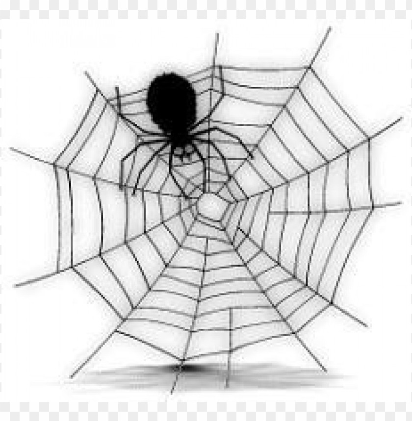 free PNG Download free halloween spider web clipart png photo   PNG images transparent