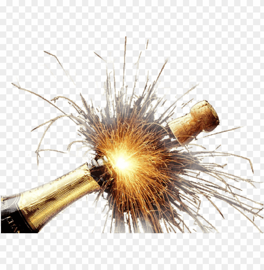 free PNG Download Champagne Explosion png images background PNG images transparent
