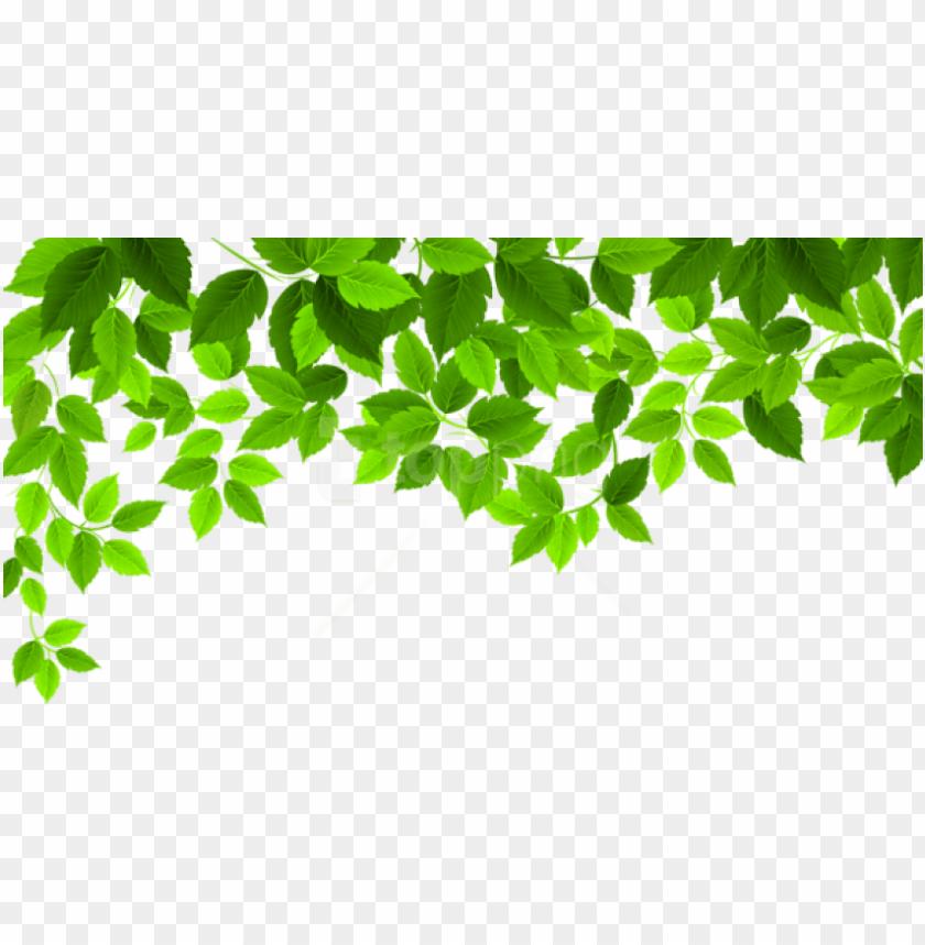free PNG free png download spring leaves decoration png images - spring PNG image with transparent background PNG images transparent
