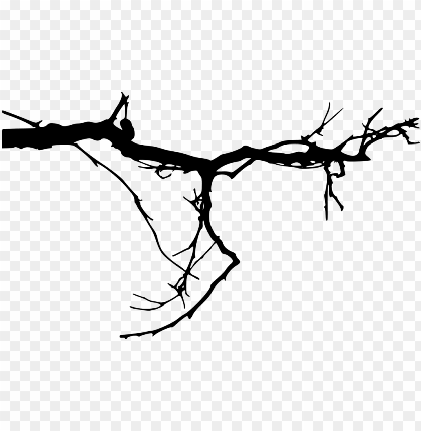 free PNG free png simple tree branch png images transparent - tree branches transparent background PNG image with transparent background PNG images transparent