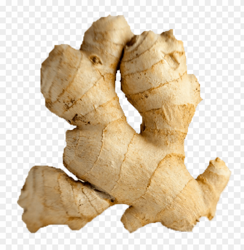 Download ginger png images background@toppng.com