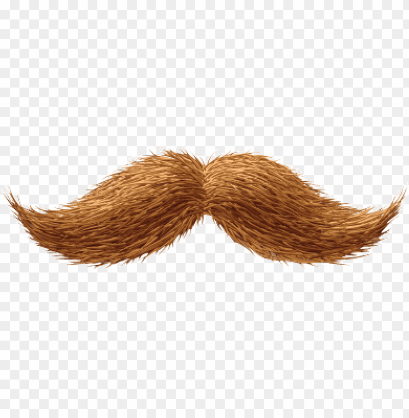 Download ginger moustache png images background@toppng.com