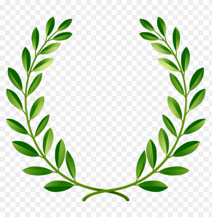 free PNG Download green laurel leaves clipart png photo   PNG images transparent
