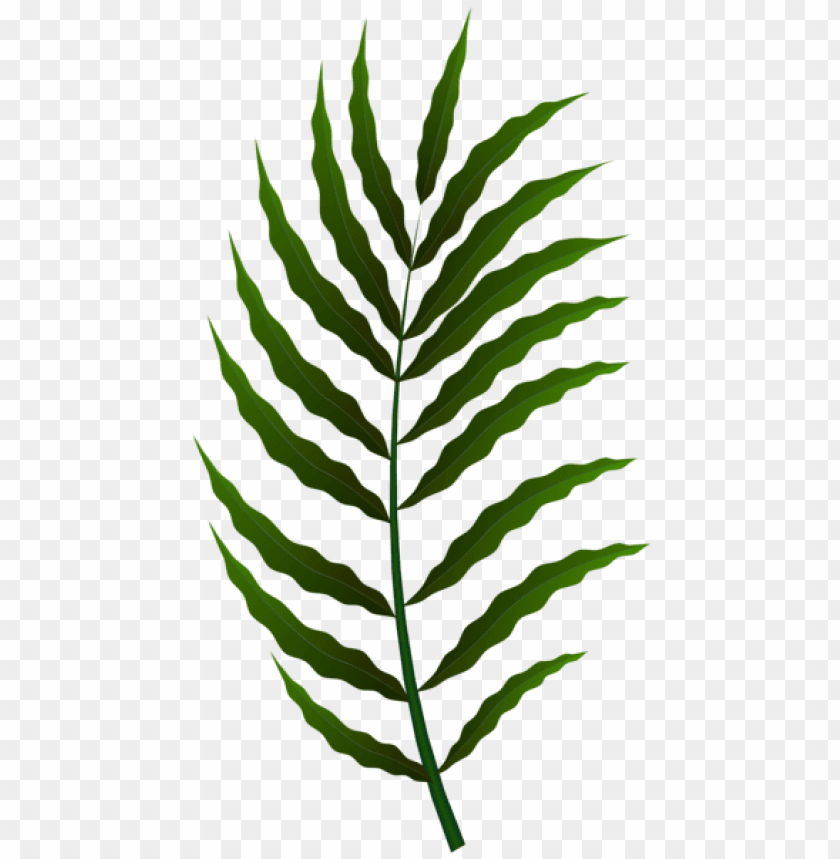 Green Leaf Png Free Png Images Toppng