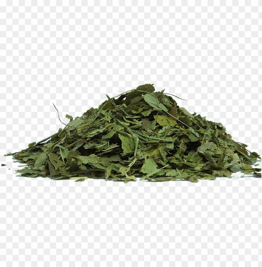 Herbs Png Tea Leaves Transparent Background Png Image With